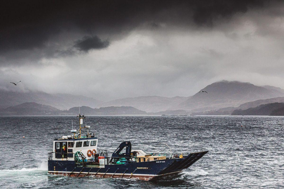boat in a Scottish sea loch
