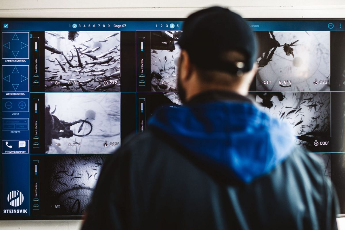 man in front of salmon feeding monitor