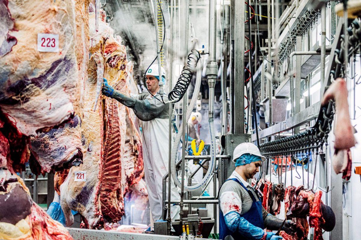inside meat plant